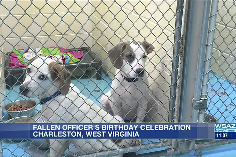 Fallen police officer honored with pet adoption event