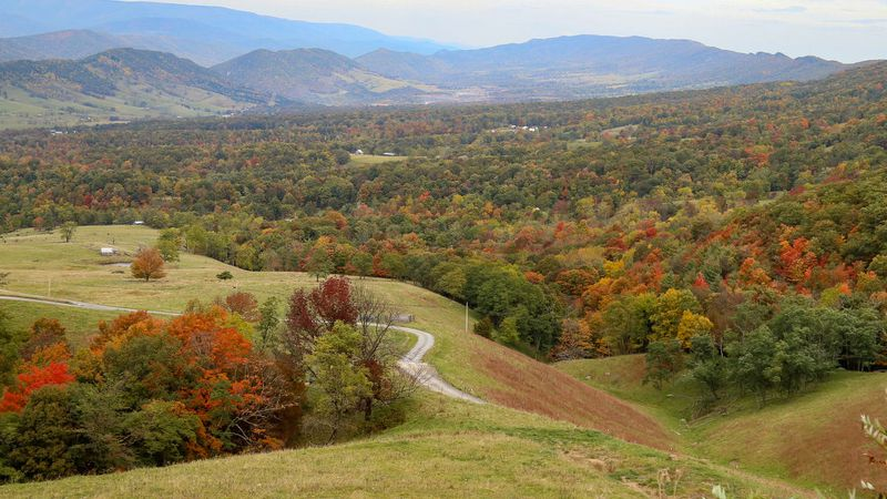 Fall foliage in Pendleton County, WV