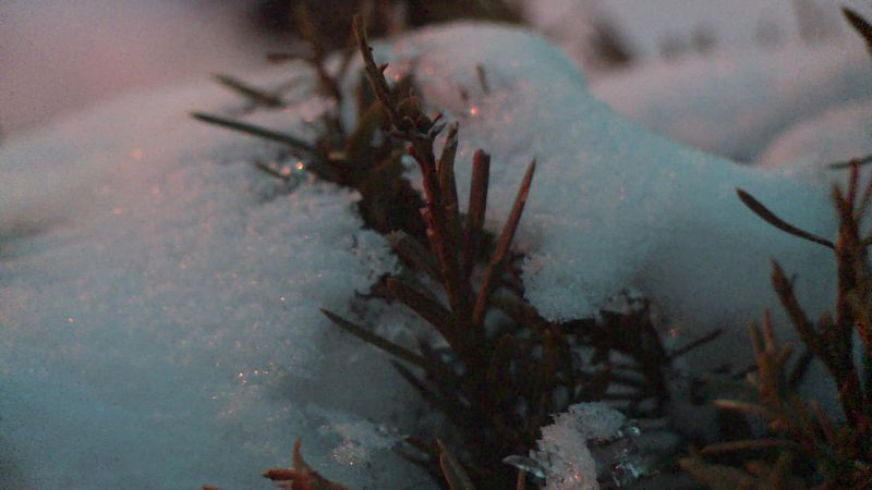 As the deep freeze sets in, local shelters are working ahead to make sure everyone has a safe...
