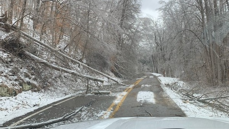 Hurricane Creek Road the day after a second ice storm hit Monday night.