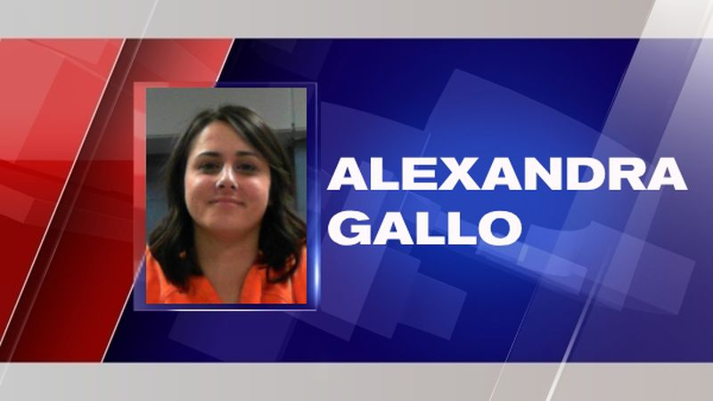Alexandra Gallo plead guilty to charges of battery, trespassing and public intoxication on...