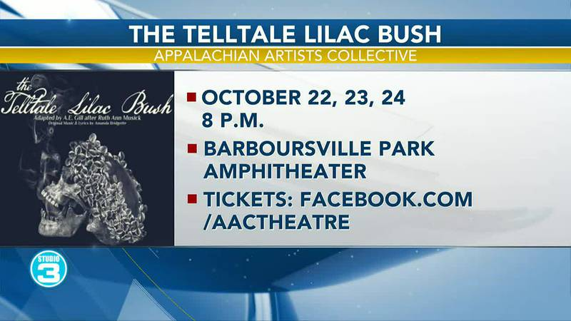 The Telltale Lilac Bush Appalachian Artists Collective
