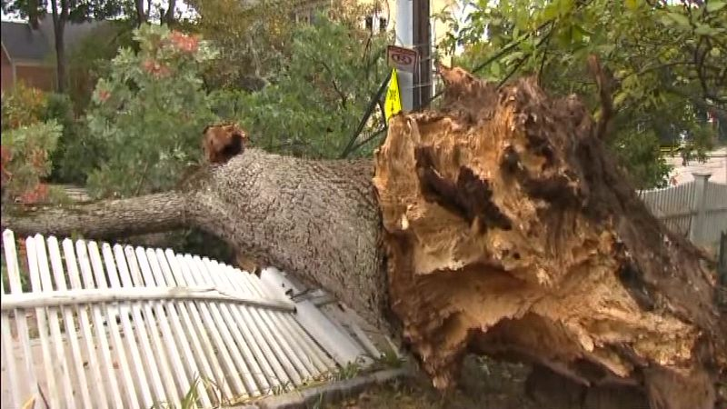 A record-breaking autumn storm plunged hundreds of thousands of people into the dark, toppled...