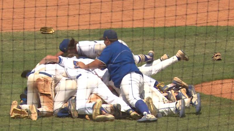 Wildcats win 7th state baseball title