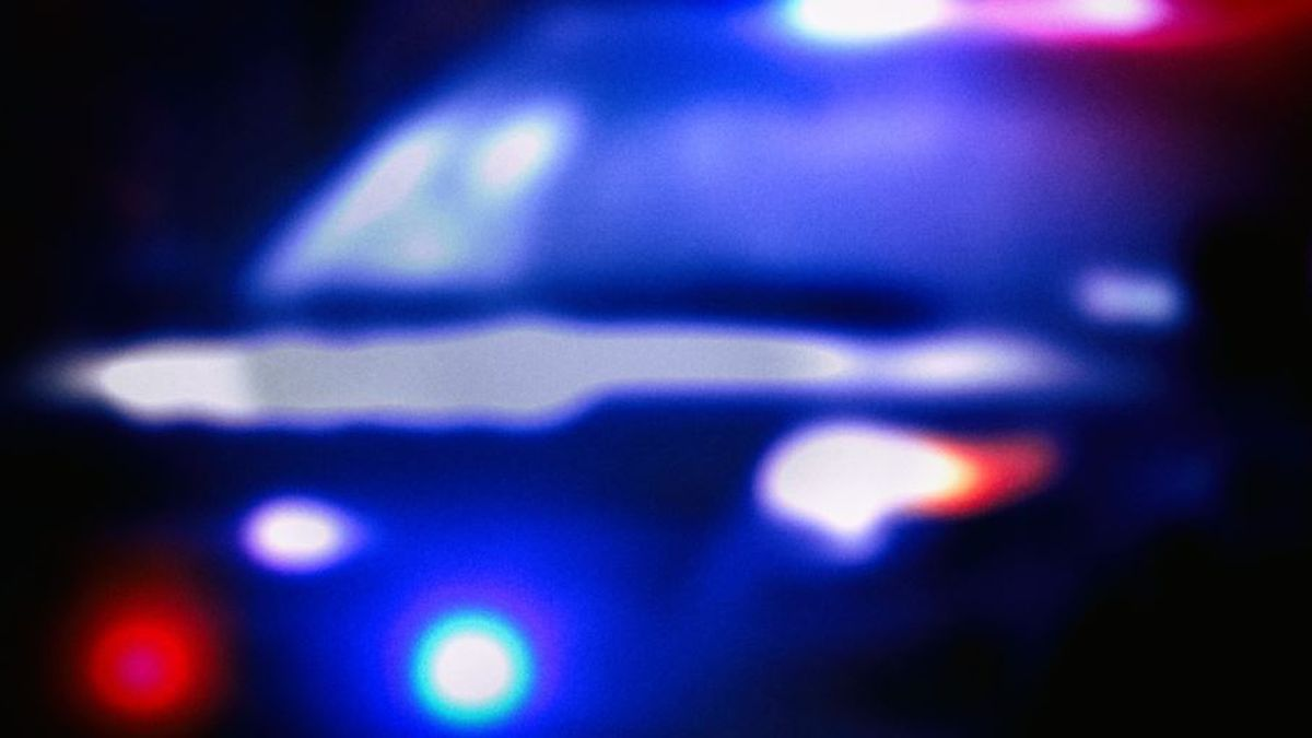 The driver tried to outrun a police officer during attempted traffic stop, police say.