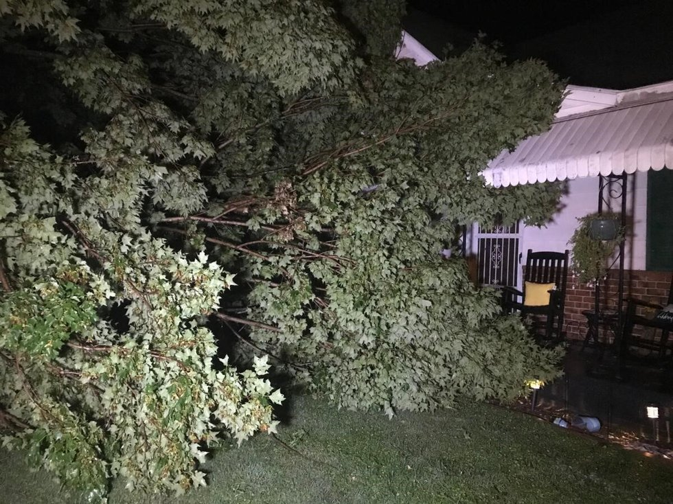Strong storms on Tuesday night downed trees in parts of Putnam County.