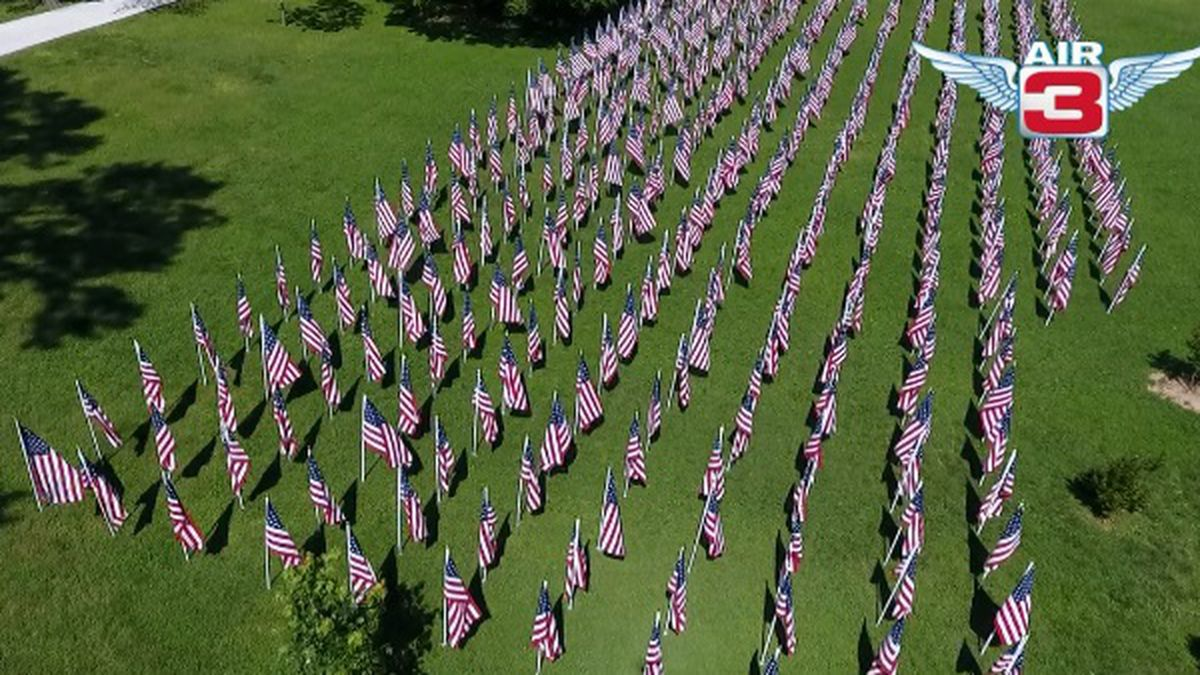 453 flags have been placed at Ritter Park in Huntington to represent the number of children currently in foster care in Cabell County.
