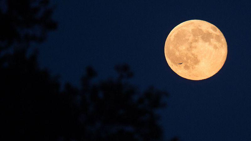 A full moon over Arlington, Virginia.