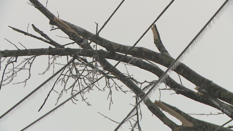 AEP is working to first remove trees and then restore power.